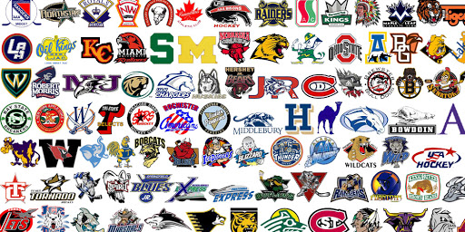 Junior hockey creates a pathway to the NHL